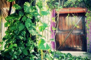 puerta en naturaleza
