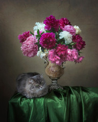 Still life with luxurious bouquet of flowers and curious kitty
