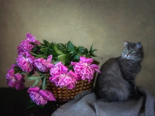Still life with basket of pink peonies and funny gray kitty