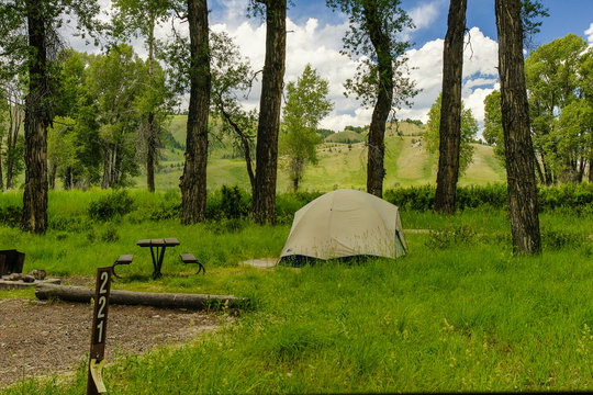 Gros Ventre Campground, Grand Teton National Park, Wyoming, United States