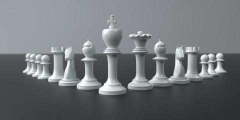 White Pawns Leadership