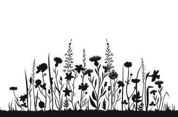 Fototapeta Wildflower silhouettes. Wild grass spring field. Herbal summer vector background. Wildflower on meadow, botanical plant black silhouette illustration