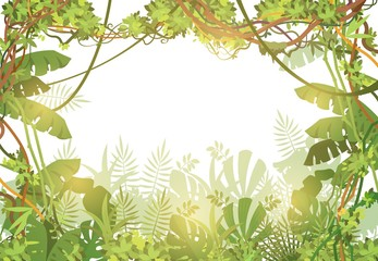 Jungle tropical background. Rainforest with tropic leaves and liana vines. Nature landscape with tropical trees. Vector illustration. Liana jungle green nature, tropical landscape forest