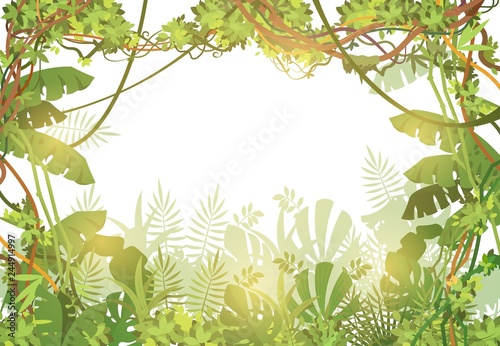 Jungle tropical background  Rainforest with tropic leaves