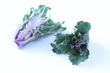 野菜 芽キャベツとぢーるの交配種 プチヴェール