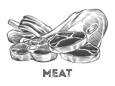 Hand drawn steak, ribs, fresh meat isolated on white background. Vector illustration