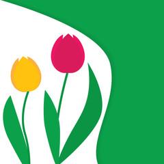 tuips flower background- vector illustration