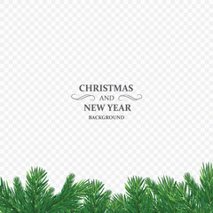 Winter holiday background. Border with Christmas tree branch isolated on transparent background. He is used for New year cards, banners, headers, party posters