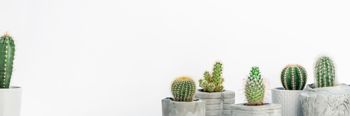 Cactuses in DIY concrete pots against the background of an empty wall with space for text. Copy space. Panoramic real photo