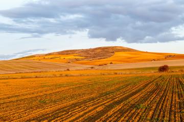 Paisaje con campos de cultivo, lomas y cielo azul con nubes al atardecer. Comarca de Los Oteros.