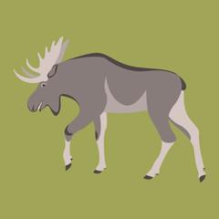 cartoon moose ,vector illustration ,flat style ,profile