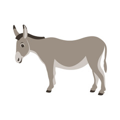 cartoon donkey ,vector illustration ,flat style ,profile