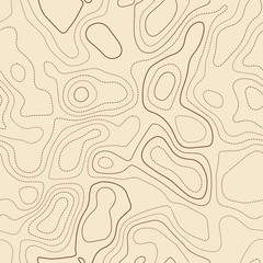 Topographic map background. Actual topographic map. Seamless design, bewitching tileable isolines pattern. Vector illustration.