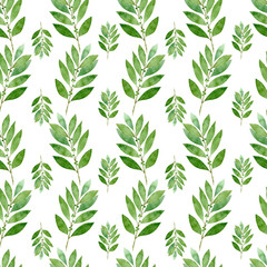 Seamless watercolor pattern of bay on white background