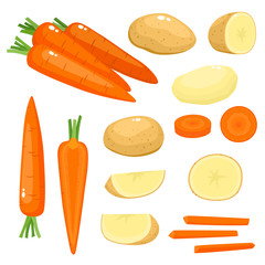 Bright vector illustration of carrot, potato isolated on white