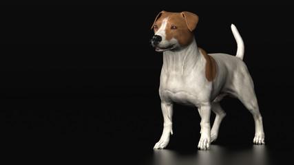 Jackrussel breed dog standing and looking elegant 3d illustration