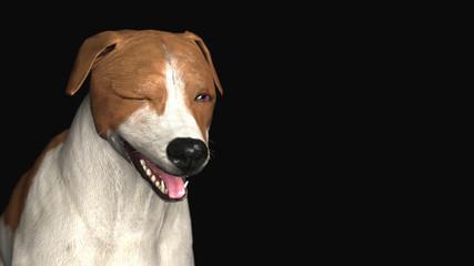 Portrait of Jackr russel terrier with smile and wink 3d illustration