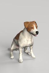 Jack russel terrier sitting calmly 3d illustration
