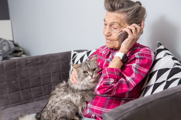 Theme old person uses technology. Mature contented joy smile active gray hair Caucasian wrinkles woman sitting home living room on sofa with fluffy cat using mobile phone, calling and talking phone