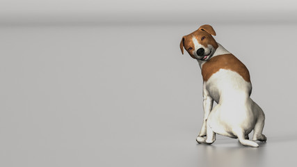 Jack russel terrier sitting in middle and looking back to camrea 3d illustration