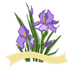 bouquet with irises