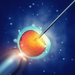 In vitro fertilisation, Injecting sperm into egg cell, Assisted reproductive treatment