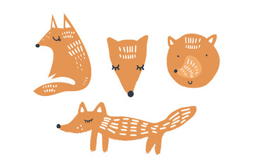Vector illustrations of cute foxes, woodland nursery animals collection