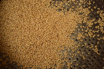 brown flax seeds background