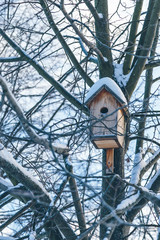 birdhouse on a tree in a winter park in the afternoon