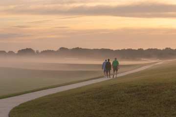 Three men are walking down the road in a field covered with fog