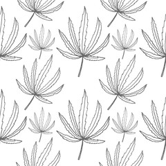 cannabis leaf vector seamless pattern isolated on white background