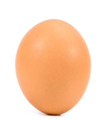 .chicken egg on white background