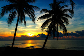 Coconut with twilight at the beach Ban Krut