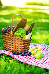 Picnic basket in summer park
