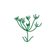 Herb, caraway icon. Element of herb icon for mobile concept and web apps. Detailed Herb, caraway icon can be used for web and mobile
