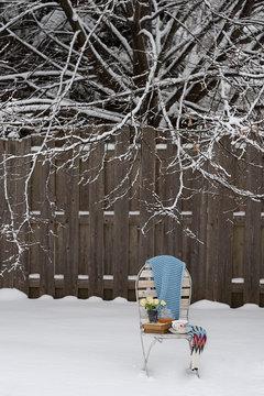 Tea in Snow Landscape