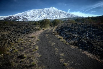 Wall Mural - Path To Winter Etna Mount Snow Covered