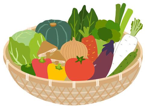 野菜のイラスト バスケット