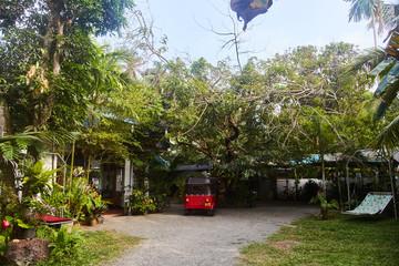 Courtyard of a tropical villa in Sri Lanka