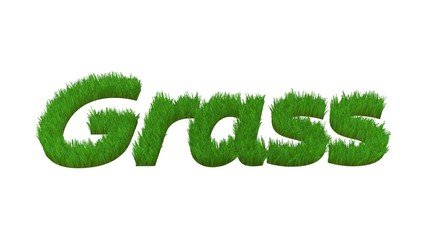grass word with grass effect isolated on white