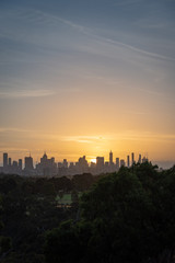 Melbourne city skyline with parks and trees in the foreground, vertical
