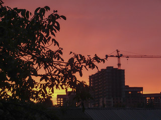 Black tree silhouettes with leaves and buildings under construction with tower cranes on a background of orange-red sky at sunset. City view silhouettes at sunset. A place for text.