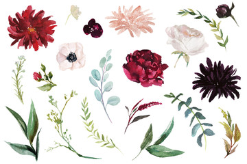 Watercolour floral illustration set. DIY flower elements collection - perfect for flower bouquets, wreaths, arrangements, wedding invitations, anniversary, birthday, postcards, greetings, cards, logo.
