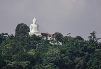 Giant Buddha statue on the mountain