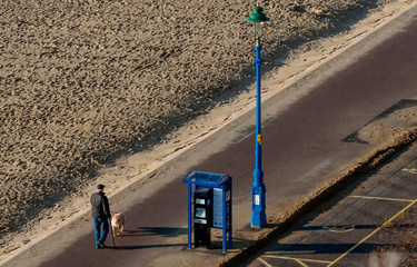 Senior man takes his dog for a walk along the sandy beach on a beautiful sunny day
