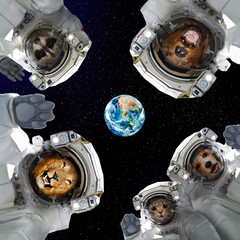 Animals in space suits in space on the background of the planet Earth. Elements of this image furnished by NASA.