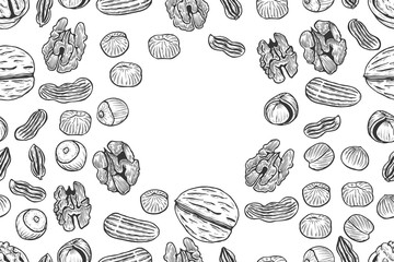 Nuts Seamless vector pattern.