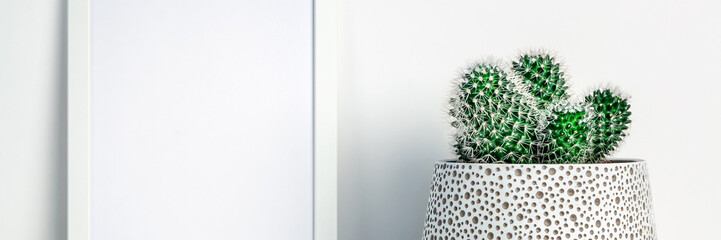 Photo sur Aluminium Cactus White shelf in the house with a cactus in a pot with a dot pattern and a white frame mockup. Scandinavian style. A place for your text or graphics. Panoramic real photo. Minimal composition