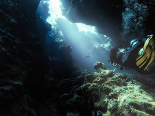 Male scuba diver swimming in sea
