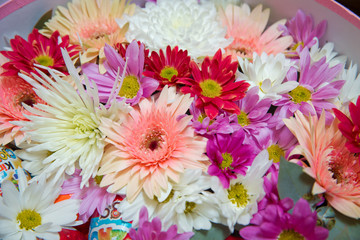 Gerbera and other colorful flowers arranged as a natural background image with white, yellow, red and pink blossoms - flat lay photography - Image